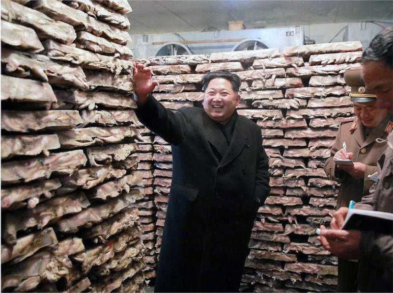 Kim Jong-un in a freezer surrounded by blocks of frozen fish (Rodong Sinmun, November 25, 2015).